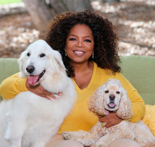 Oprah Winfrey desabafa sobre caso de filho secreto!