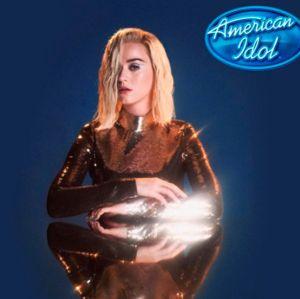 Katy Perry ganhará 80 milhões de reais como jurada do American Idol