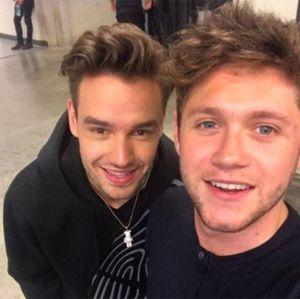 Liam Payne e Niall Horan se encontram em evento de música