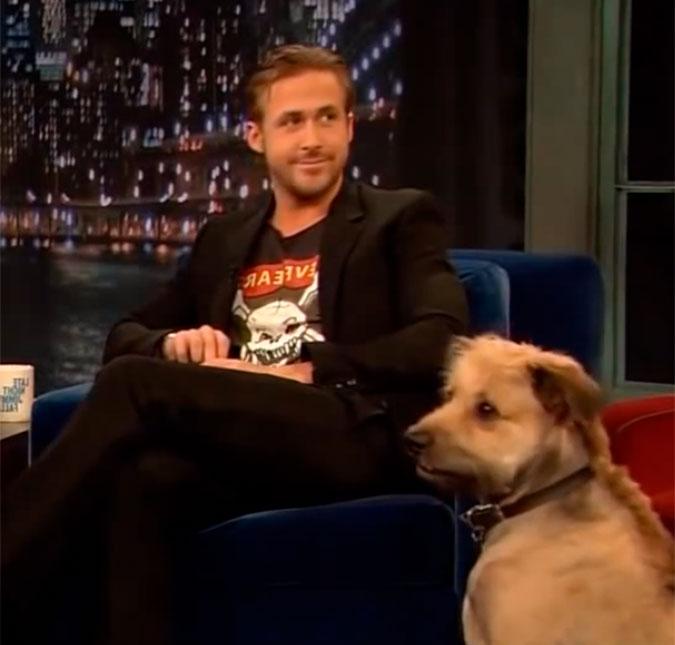 8510f110c792c A homenagem que Ryan Gosling fez ao cachorro dele que morreu vai ...